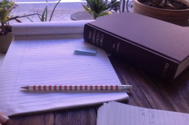 Jewish Study Bibl